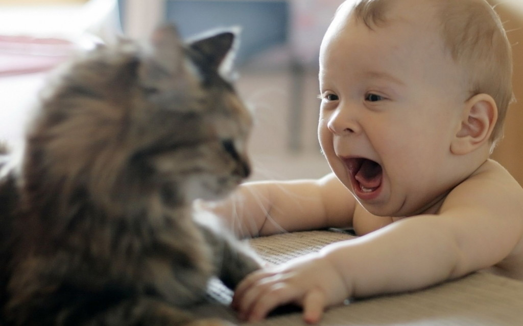 Funny Baby Wallpaper Free Download