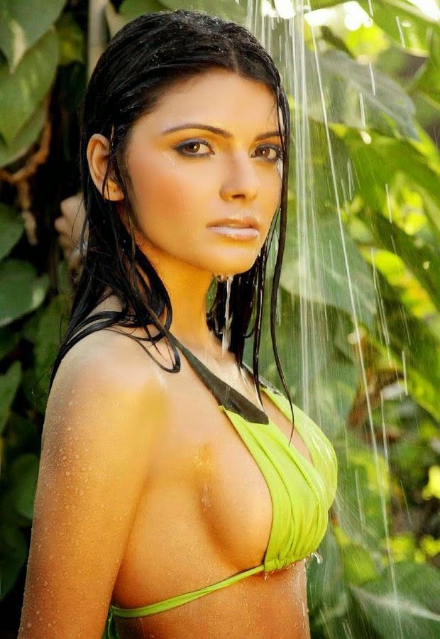 Sherlyn-Chopra-sexy-HD-Photos-stills