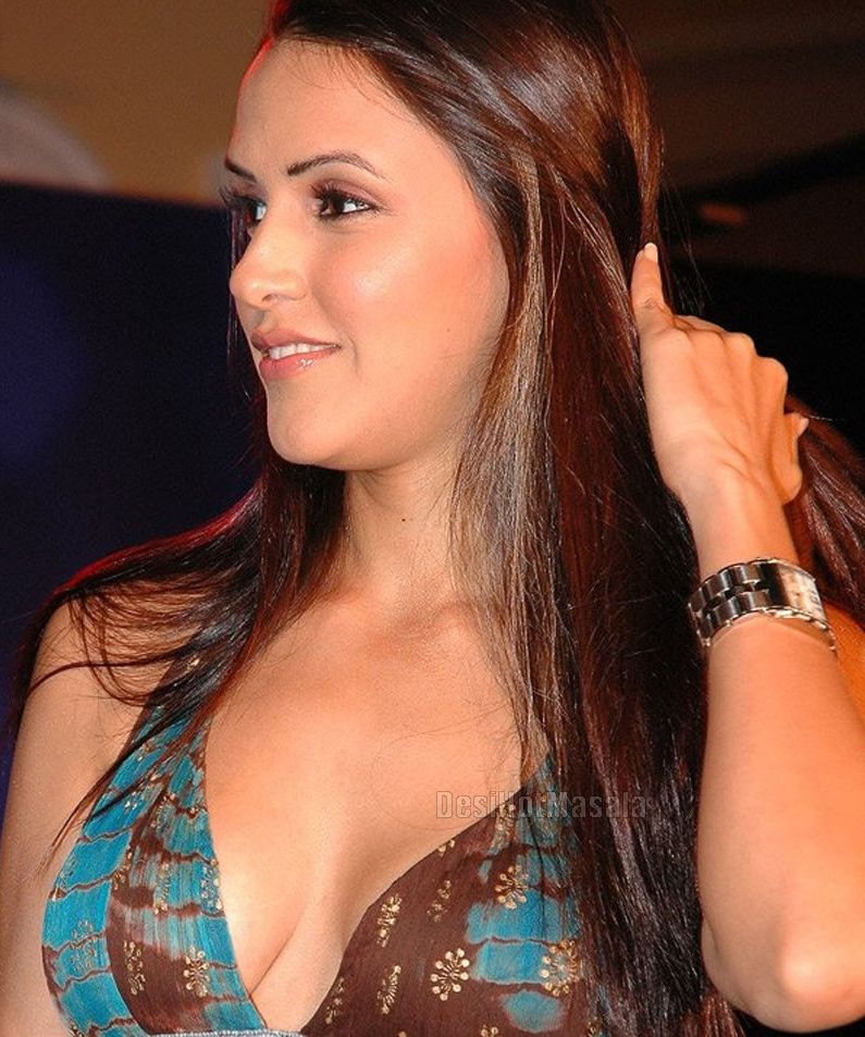Actress Neha Dhupia Photos