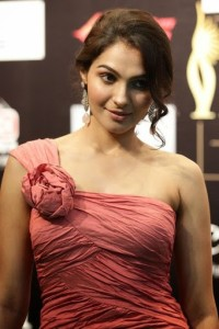 Andrea Jeremiah in Pink Color Dress at the IIFA Awards