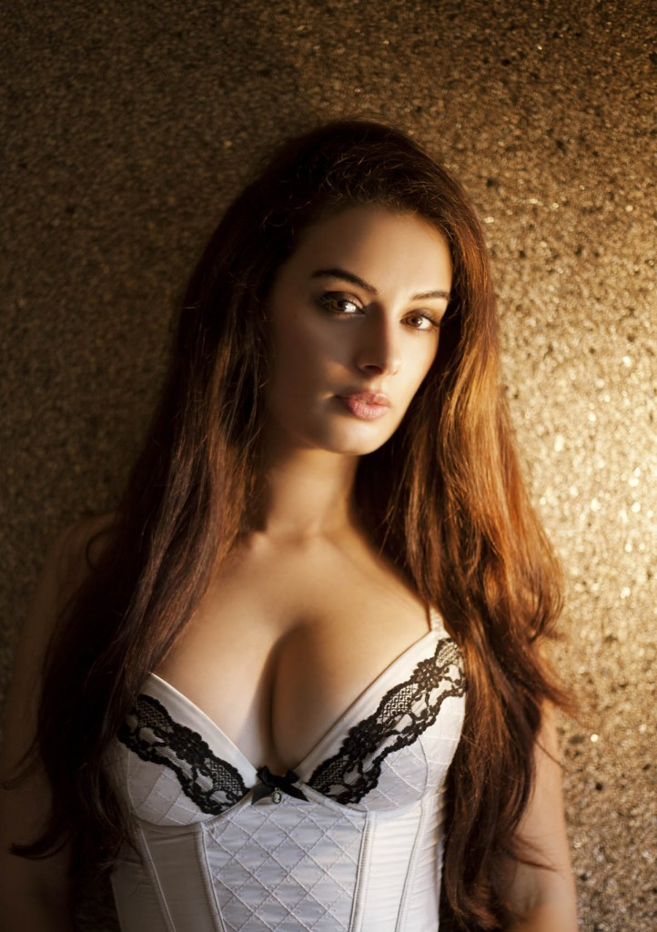 Gorgeous Evelyn Sharma Hot Image