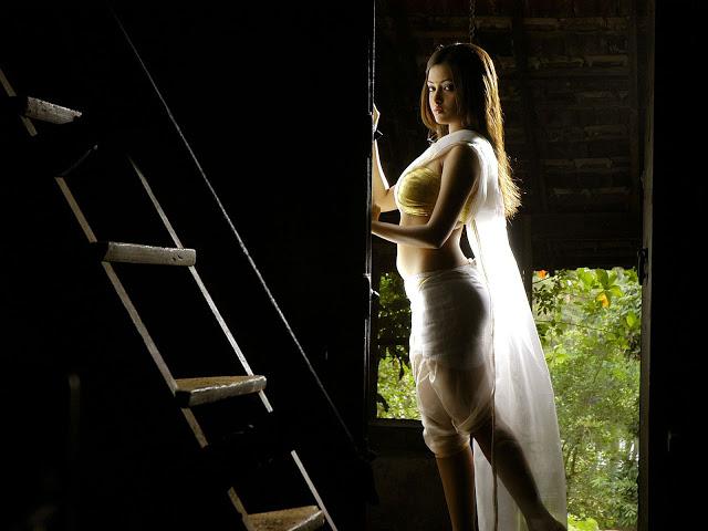 Riya Sen white Saree