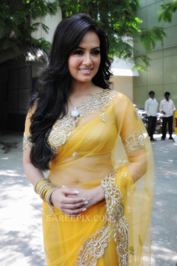 Sana-khan-saree-Nadigayin-diary-movie-audio-launch